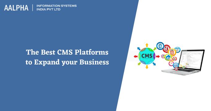 best cms for website development